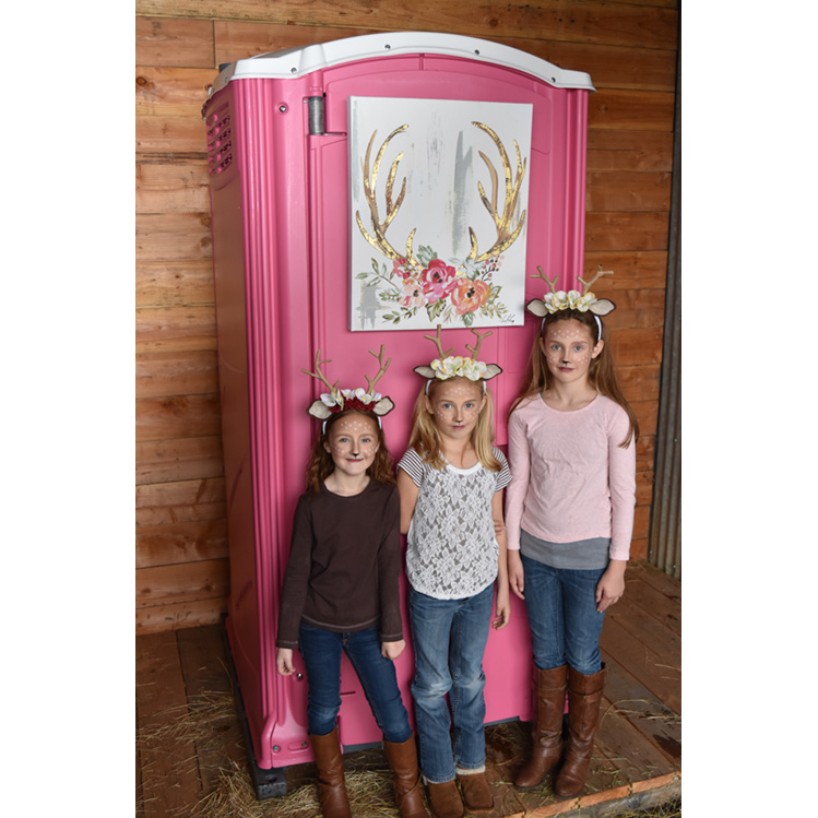 The Pink Powder Room